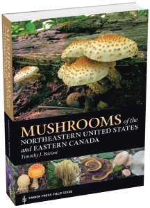 Mushrooms of the Northeastern United States and Eastern Canada