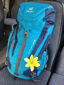 My Deuter ACT Trail 28 SL on the bus with me