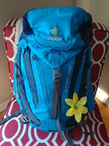 Deuter ACT Trail 28 SL Backpack is simply the best!