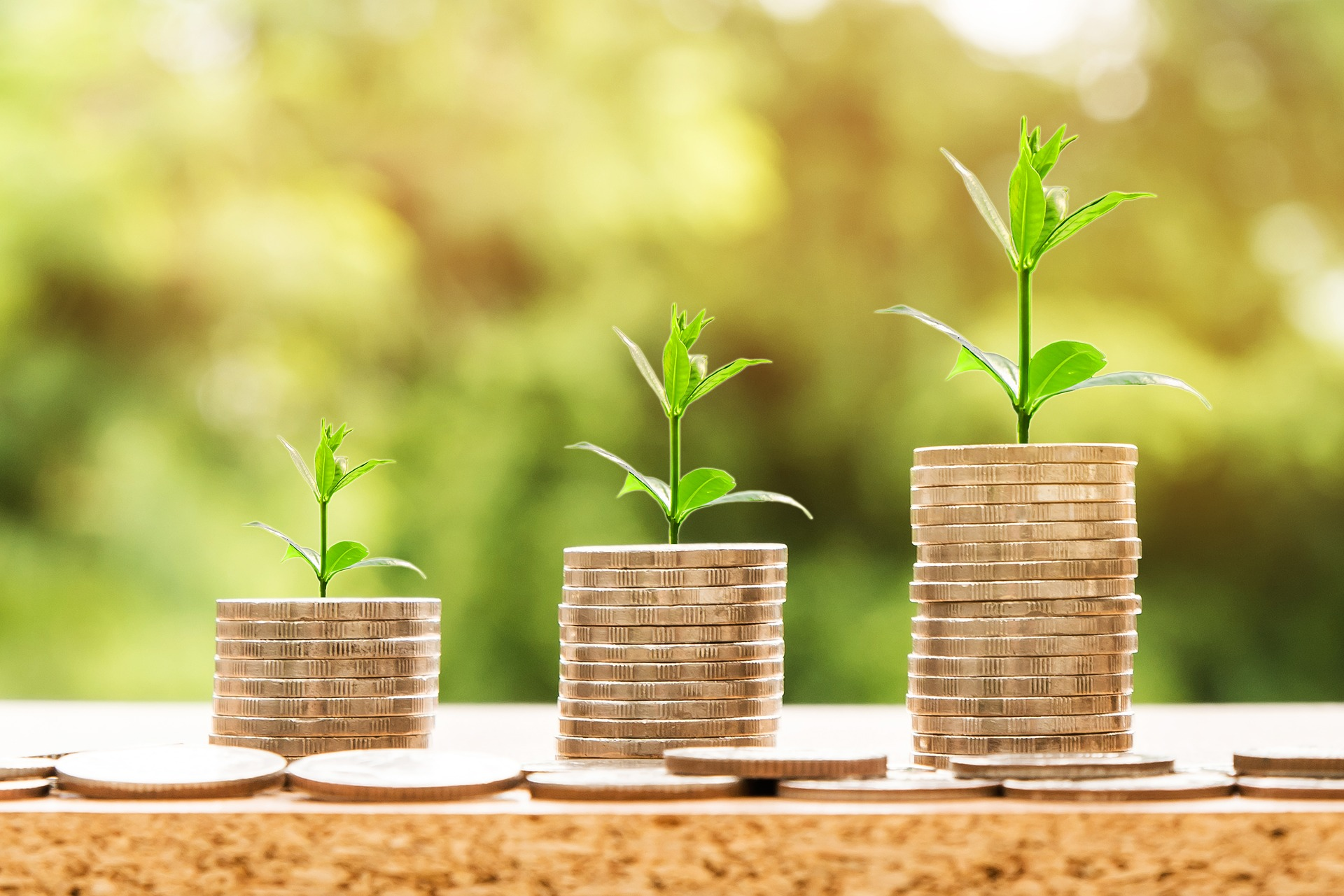 True Costs of Investing in a Business (And Ways to Raise Funds)